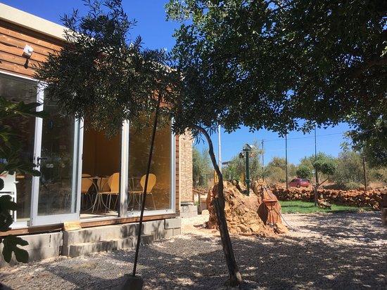 Rancho Belchior: in de shade