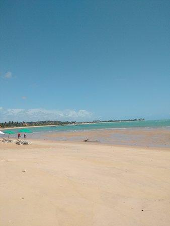State of Alagoas: Paisagem maravilhosa