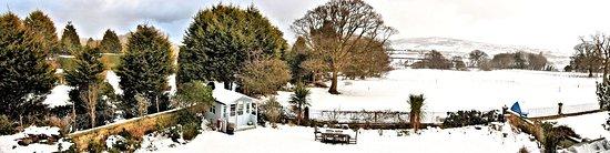 Fylingthorpe, UK: Saxon Villa Garden 2018