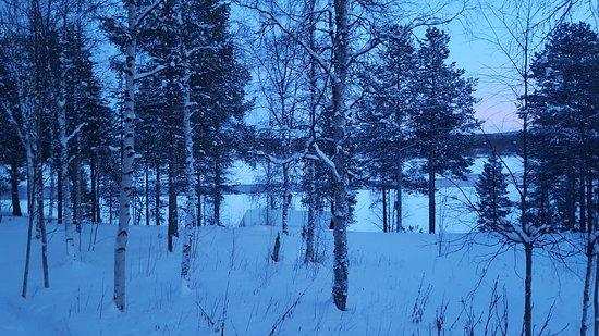 Svanvik, Norway: View from our bedroom