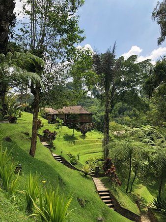 Bagus Jati Health & Wellbeing Retreat: Beautiful Private Villas