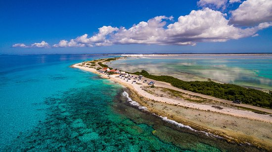 Bonaire's Shoreline in endless blues
