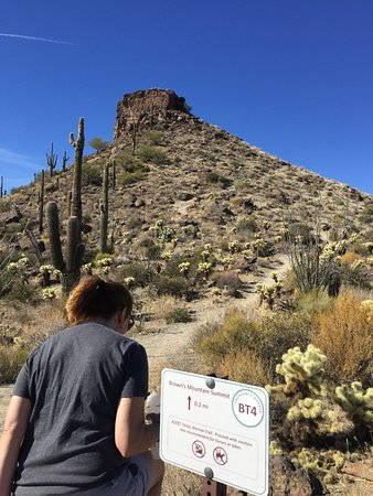 McDowell Sonoran Preserve: Ascending Brown's Mountain