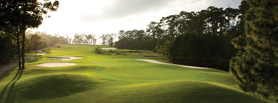 Fort Morgan, AL: Play a round or two of golf on some of the top golf courses in the area.
