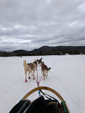 Campton, Nueva Hampshire: View from the sled
