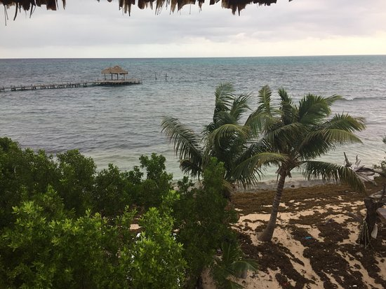 Long Caye, Belice: View from the tower of the Dock area to the island