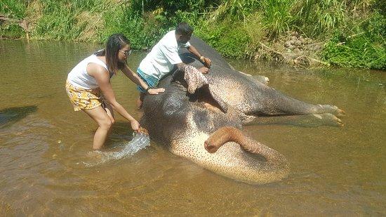 Kegalle, سريلانكا: 20180219_142159_large.jpg