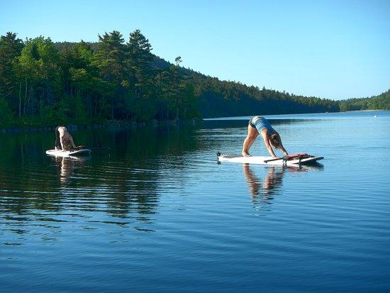 Acadia Stand Up Paddleboarding : Paddle Board Yoga!