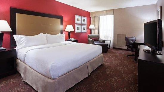 Holiday Inn Cincinnati Airport: Guest room