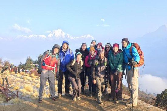 Poon Hill Flash Trek with 4WD To and...