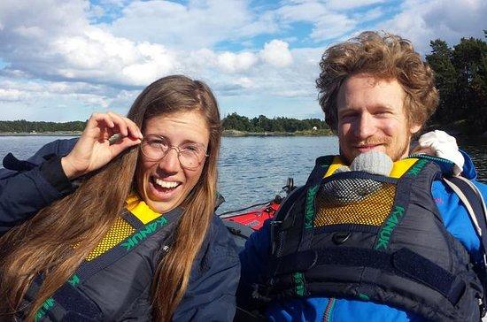 Oxelösund Archipelago Guided Kayak...