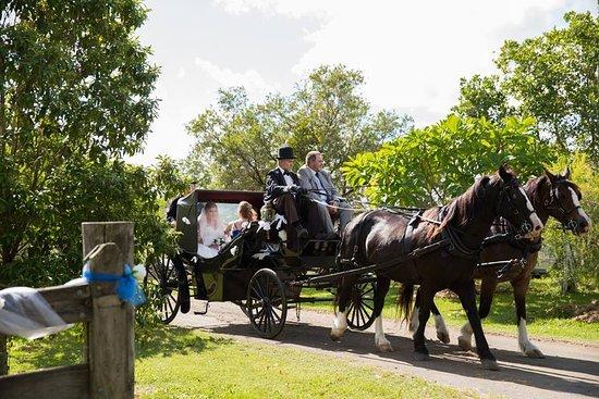 Amamoor, Avustralya: Bride arriving to her wedding