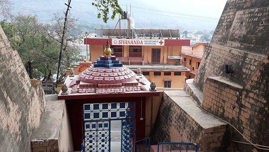 Resultado de imagen de sivananda hospital