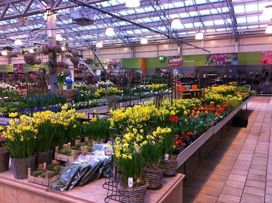 Duernten, Switzerland: garden center