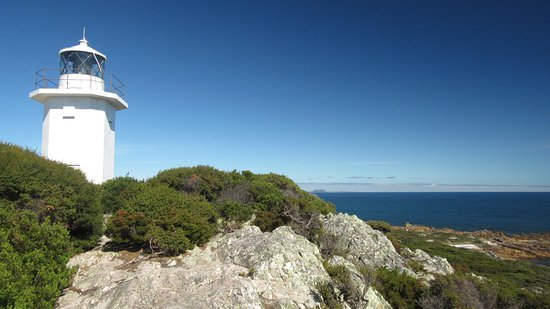 Rocky Cape ภาพถ่าย