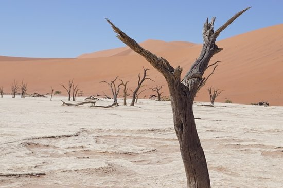 What to do and see in Sossusvlei, Namibia: The Best Places and Tips
