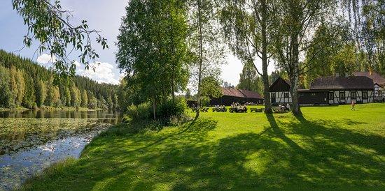 Buskerud, Noruega: Generøst piknikområde på Blaafarveværket