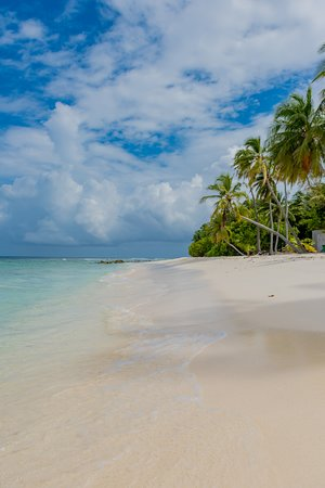 Beach - Picture of Maclura Residence, Maalhos - Tripadvisor