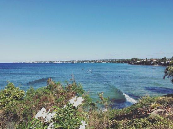 Atlantic Shores, Barbados: Surfing In Barbados, Ride The Tide Surf School's surfing lessons