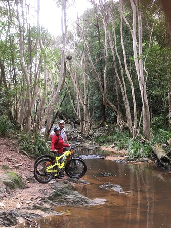 Bike N Hike Adventure Tours: biking through the rainforest