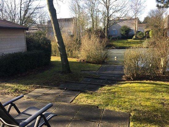 Brouwershaven-billede
