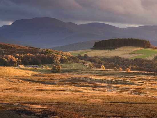 Corriechullie Farm and the Cairngorm Mountains, Grantown-on-Spey. © VisitScotland / Damian Shiel