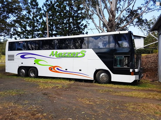 Kyogle, Australia: One of the coaches