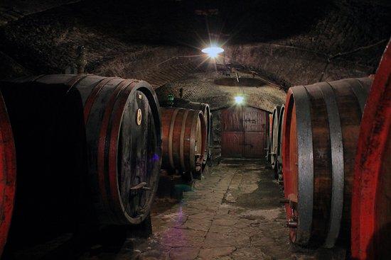 Grassina, Italia: Cellar