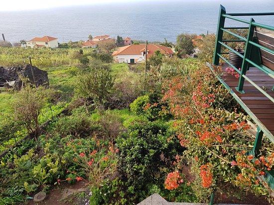 Estreito da Calheta, Portugal: 20180301_090537_large.jpg