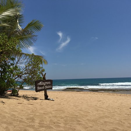 Mangrove Garden Beach Cabanas: photo5.jpg