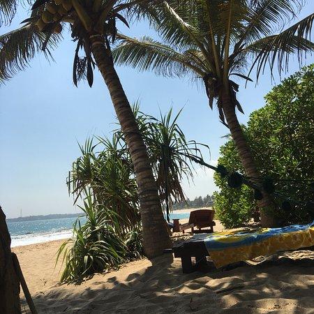 Mangrove Garden Beach Cabanas: photo7.jpg