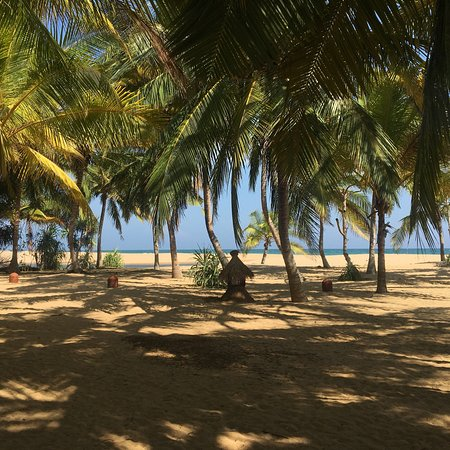 Mangrove Garden Beach Cabanas: photo8.jpg
