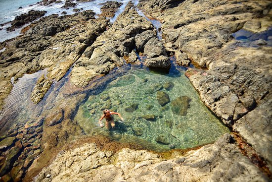 Playa Grande, Costa Rica: Beach tours at home