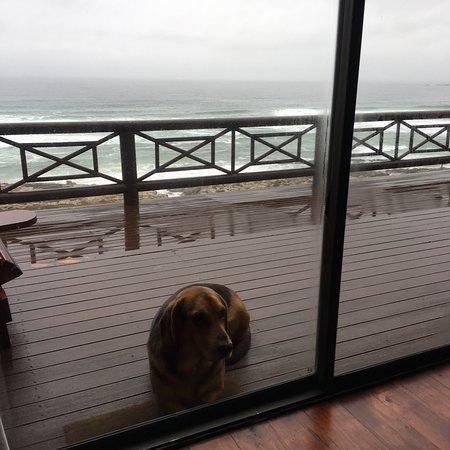 Oyster Bay, Südafrika: photo0.jpg