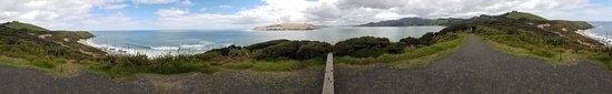 Omapere, New Zealand: Arai Te Uru Heritage Walk