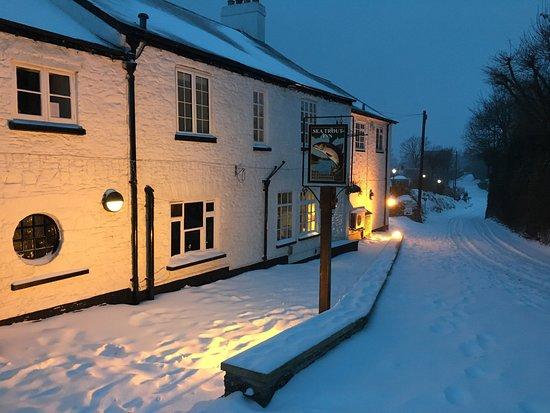 Staverton, UK: Snow snow snow! 2nd March 2018
