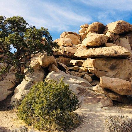 Cap Rock: photo0.jpg