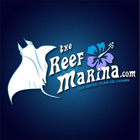 ‪The Reef Marina‬