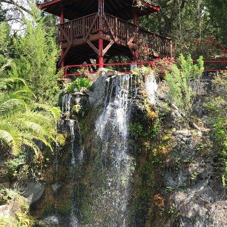 Cedar Lakes Woods And Gardens: photo1.jpg