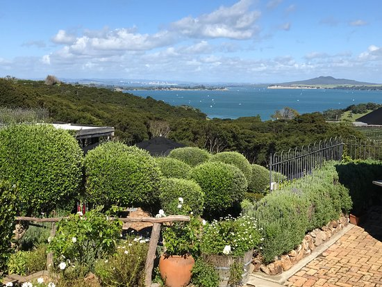 Auckland Fine Wine & Food Tours: View from Mud Brick Winery