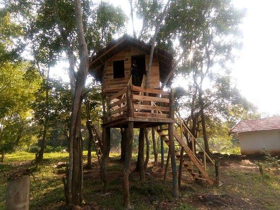 Habarana Inn Foto