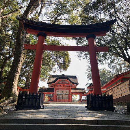 Usajingu Shrine Photo