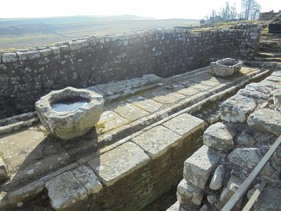 Housesteads Fort and Museum - Hadrian's Wall: Roman toilet