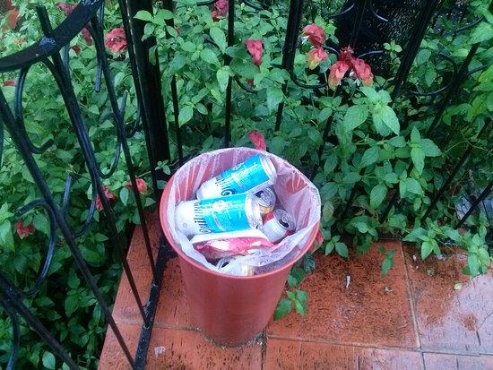 La Strada: Se permite el consumo de bebidas alcohólicas dentro de la piscina habiendo criaturas en la misma