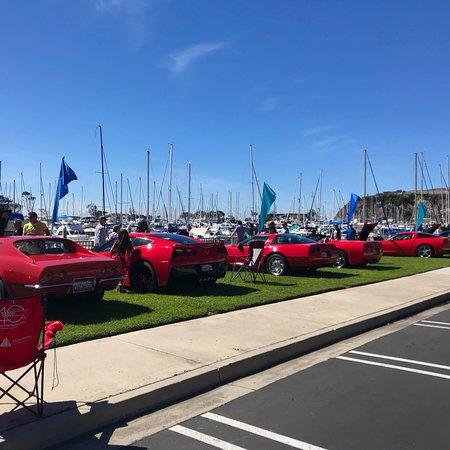 Dana Point, CA: DANA PT HARBOR, CA! 47th Annual Dana Pt Festival of🐳's! The Legendary Corvette!