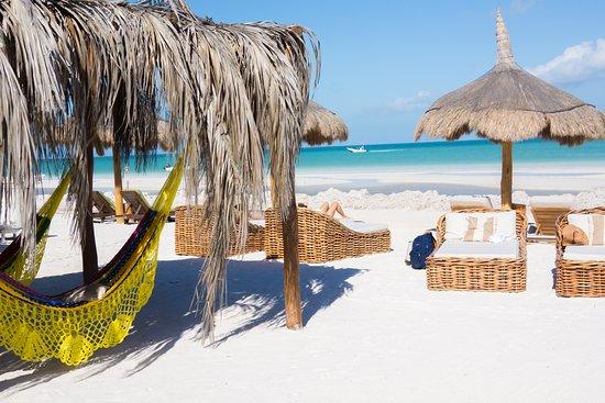 casasandra boutique hotel  i spent many happy hours in the yellow beachside hammock  i spent many happy hours in the yellow beachside hammock      rh   tripadvisor