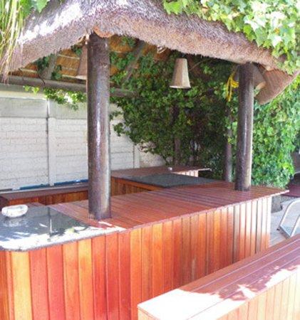 Cape Town Palms Imagem