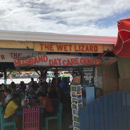 Wet Lizard: photo0.jpg
