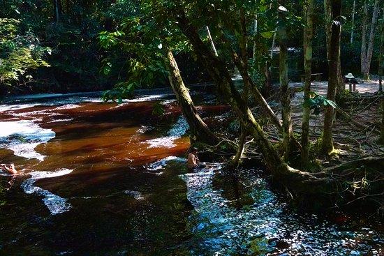 Cachoeira do Santuário: coca cola
