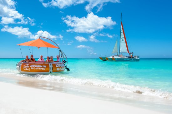 Palm - Eagle Beach, Aruba: Octopus Aruba Sailing and Snorkeling Aqua Donut Boat Private Boat Private Sailing